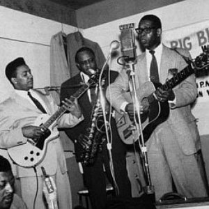 Image pour 'Elmore James & His Broom Dusters'