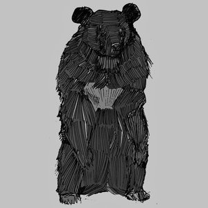 Image for 'Moon Bear'