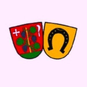 Image for 'Musikverein Eintracht Höngg'
