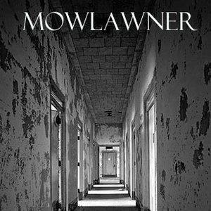 Image for 'Mowlawner'