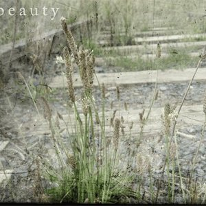 Image for 'Ethereal Beauty'
