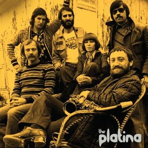 Image for 'The Platina'