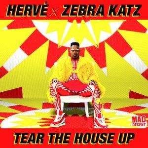 Image for 'Hervé & Zebra Katz'