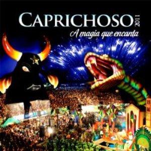 Image for 'Caprichoso 2011'