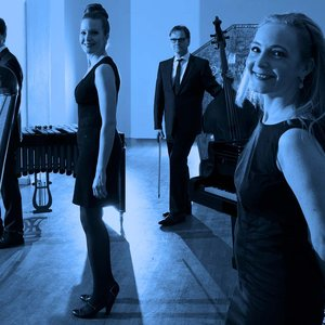Image for 'Blue Chamber Quartet'