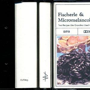 Image for 'Fischerle & Micromelancolié'