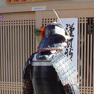 Image for 'Wakamaru'