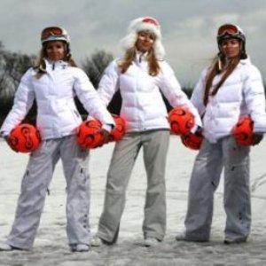 Image for 'Арктика'