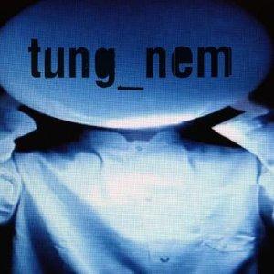 Image for 'tung_nem'