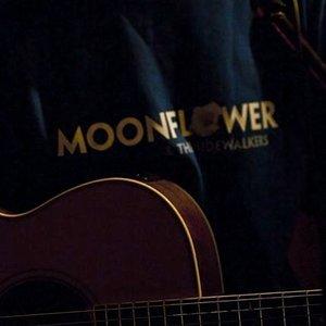 Image for 'Moonflower'