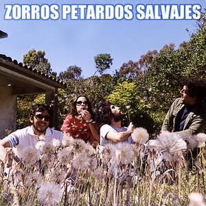 Image for 'Zorros Petardos Salvajes'