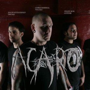 Image for 'Acaro'