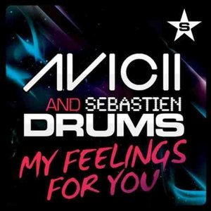 Immagine per 'Avicii & Sebastien Drums'