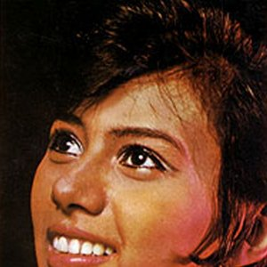 Image for 'Lilis Surjani'