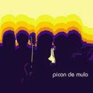 Image for 'Picón de Mulo'