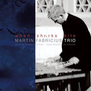 Bild för 'Martin Fabricius Trio'