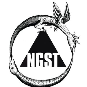 Image for '▲NGST'