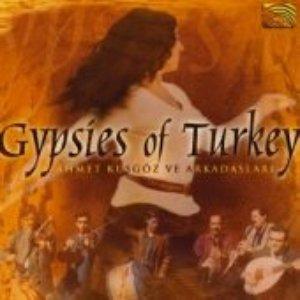 Image for 'Gypsies From Turkey (Turkey)'