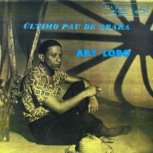 Image pour 'Ary Lobo'