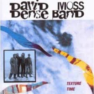 Image for 'David Moss Dense Band'