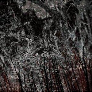 Image for 'ondo'