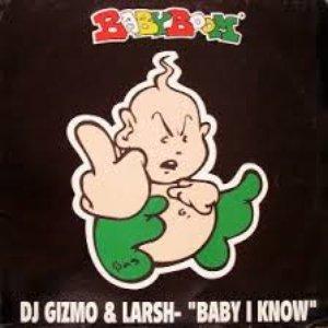Image for 'DJ Gizmo & Larsh'