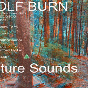 Image for 'wolf burn'
