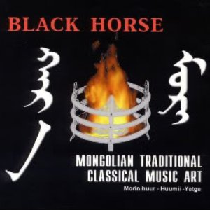 Image for 'Black Horse'