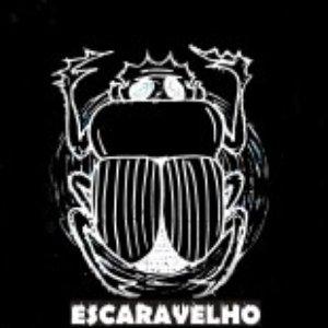 Imagen de 'Escaravelho'