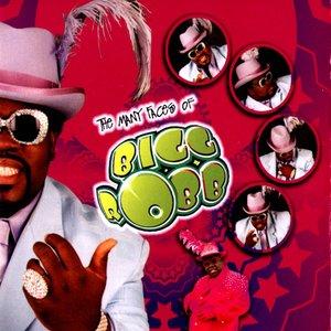 Image for 'Bigg Robb'