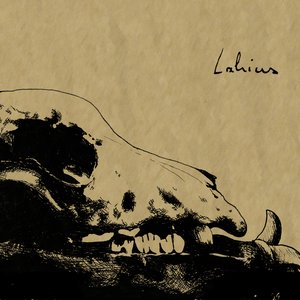 Image for 'Lahius'