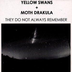 Image for 'Yellow Swans + Moth Drakula'