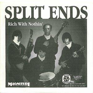 Bild für 'Split Ends'