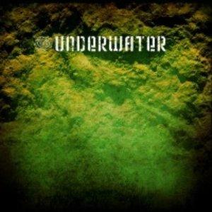Image pour 'Underwater (Russia/Krasnodar)'