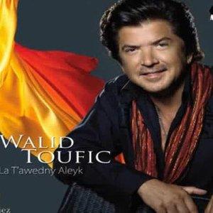 Image for 'Walid Tawfik'