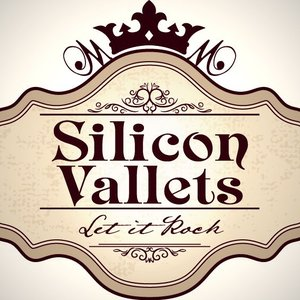 Image for 'Silicon Vallets'