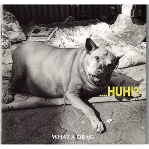 Image for '....HUH!?'