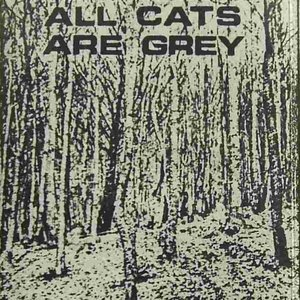 Immagine per 'All Cats Are Grey'