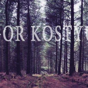 Image for 'Igor Kostyuk'
