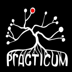 Immagine per 'Practicum'