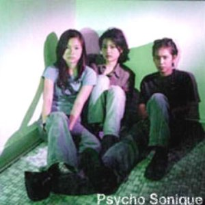 Image for 'Psycho Sonique'