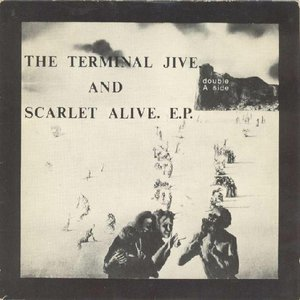Immagine per 'The Terminal Jive'