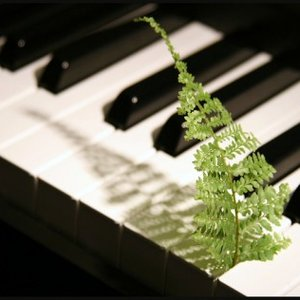 Image for 'Relaxing Piano'
