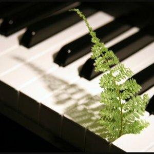 Bild für 'Relaxing Piano'
