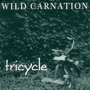Image for 'Wild Carnation'