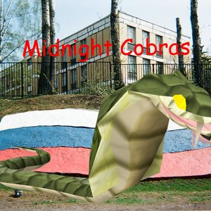 Image for 'Midnight Cobras'
