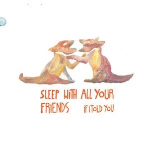 Bild för 'Sleep With All Your Friends'