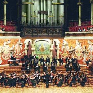 Bild für 'Strauss Festival Orchestra'