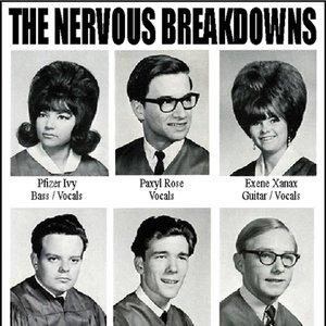 Bild för 'The Nervous Breakdowns'