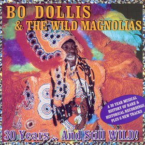 Image for 'Bo Dollis & the Wild Magnolias'
